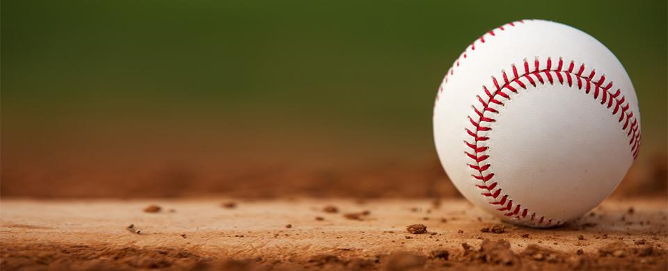 Goodwill Sponsors Baseball